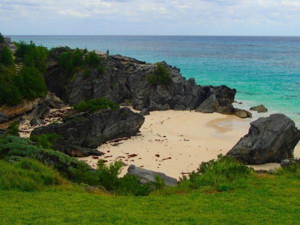 Bermuda (77)