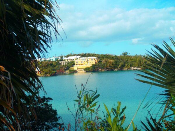 Bermuda (8)