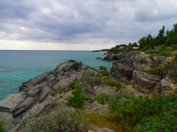 Bermuda (82)