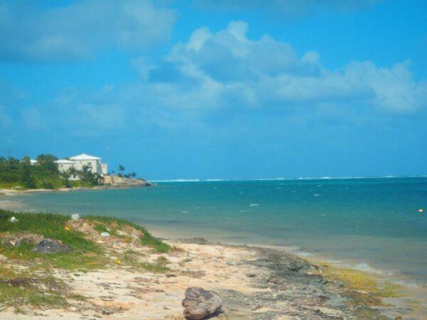 Cayman Islands (28)