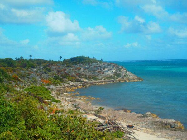 Cayman Islands (34)