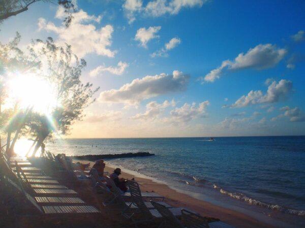Cayman Islands (50)