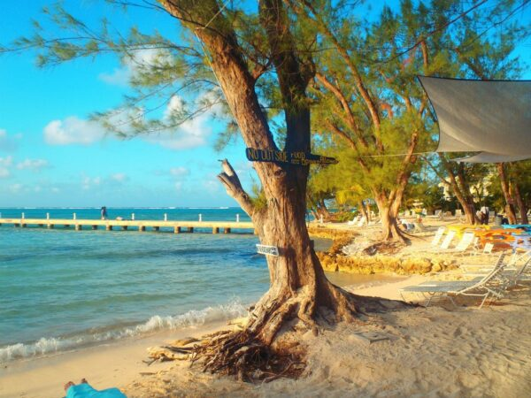 Cayman Islands (51)