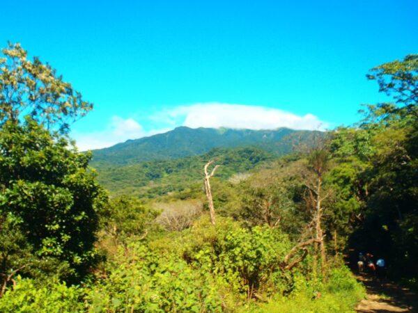 Costa Rica (31)
