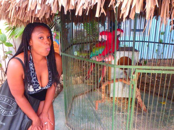 Curaçao (26)