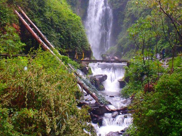 Ecuador (116)