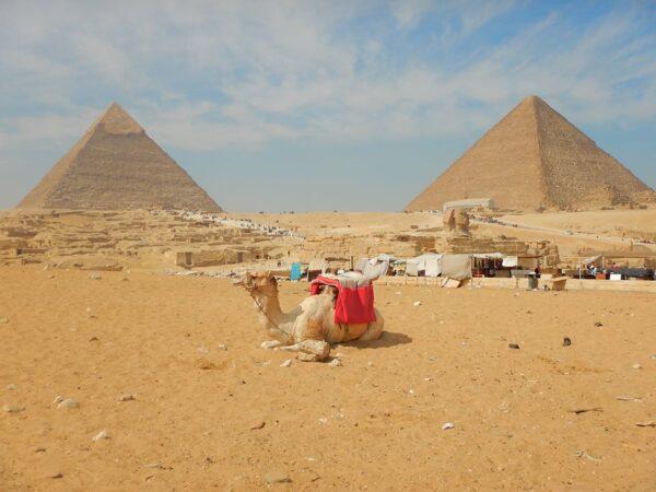 Egypt (30)
