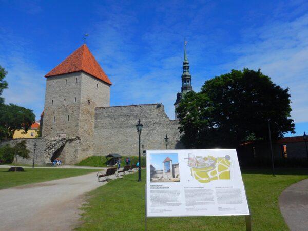 Estonia (37)