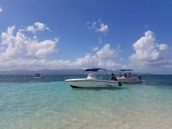 Guadeloupe (19)