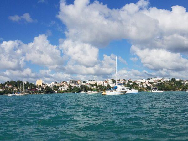 Guadeloupe (28)