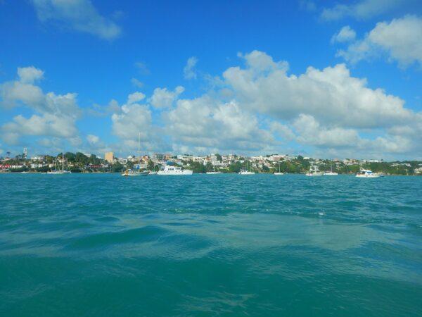 Guadeloupe (42)