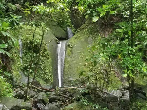 Guadeloupe (73)
