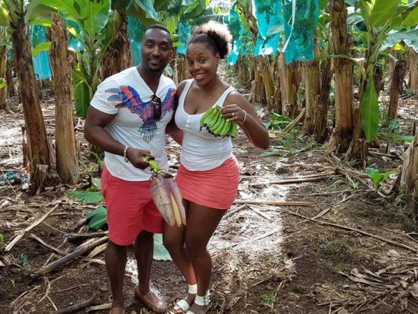 Guadeloupe (84)