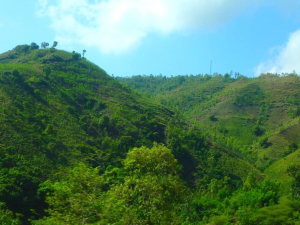 Haiti (47)