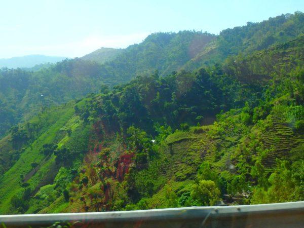 Haiti (48)