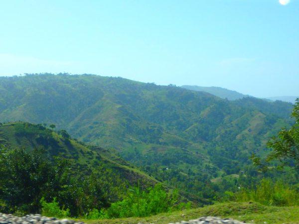 Haiti (49)