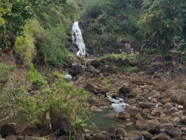 Hawaii (127)