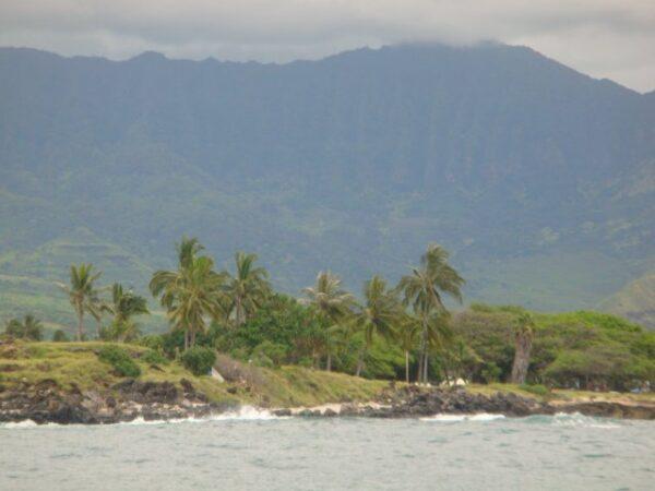 Hawaii (22)