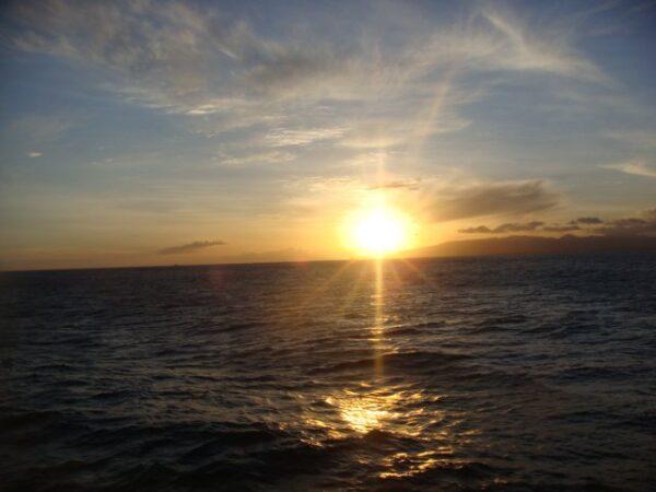 Hawaii (47)