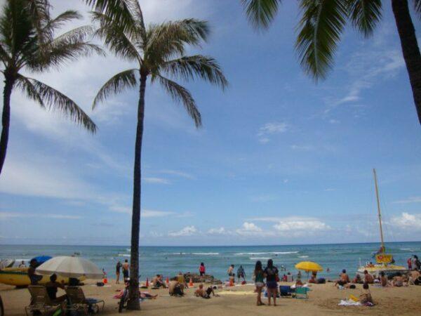 Hawaii (55)