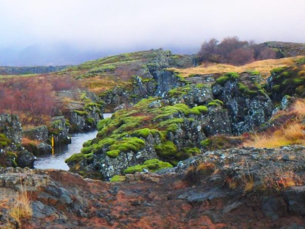 Iceland (59)