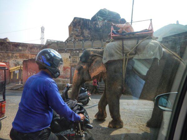 India (90)