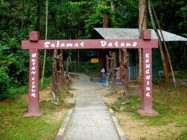 Malaysia (54)
