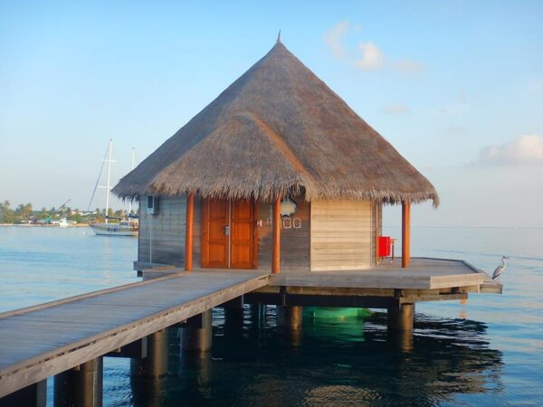 Maldives (132)