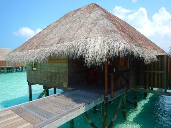 Maldives (42)