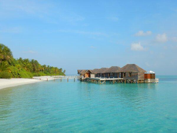 Maldives (72)