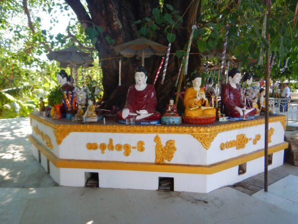 Myanmar (58)