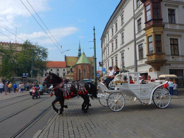Poland (47)