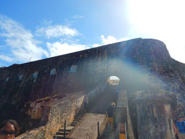 Puerto Rico (114)