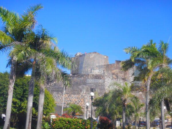 Puerto Rico (91)