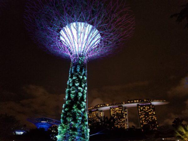 Singapore (56)