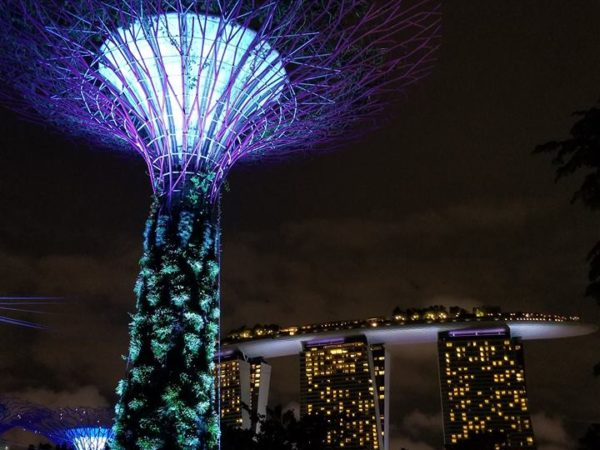 Singapore (62)