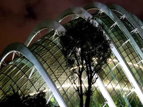 Singapore (68)