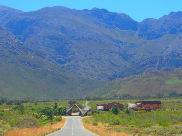 South Africa (61)