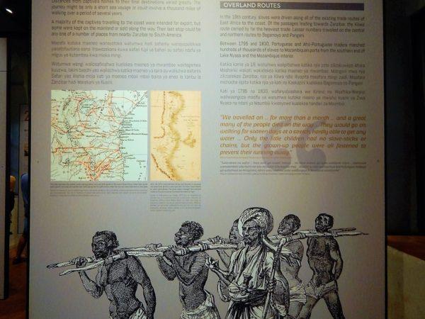 Tanzania and Zanzibar (105)