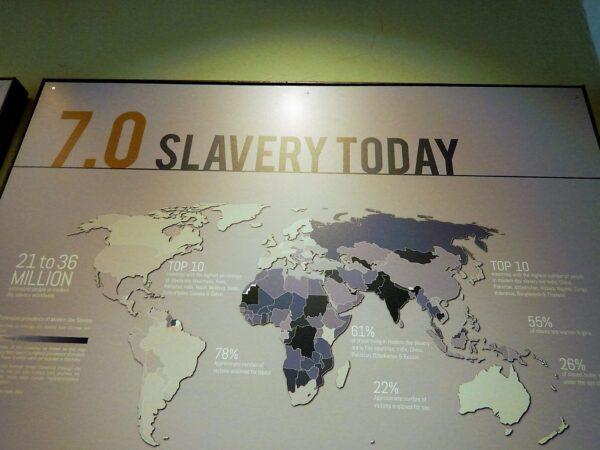 Tanzania and Zanzibar (106)