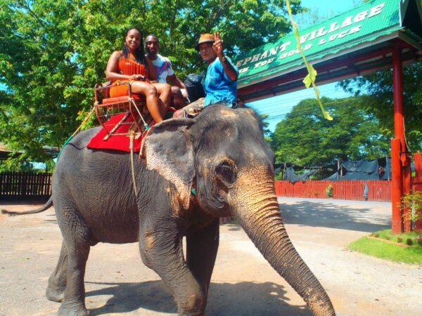 Thailand (86)