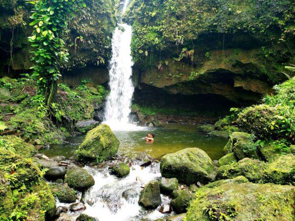 Dominica (115)
