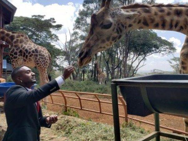 Kenya (38)
