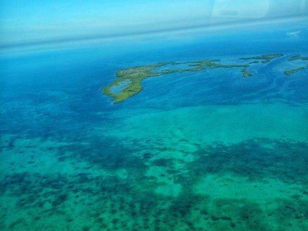 Belize 2019 (13)