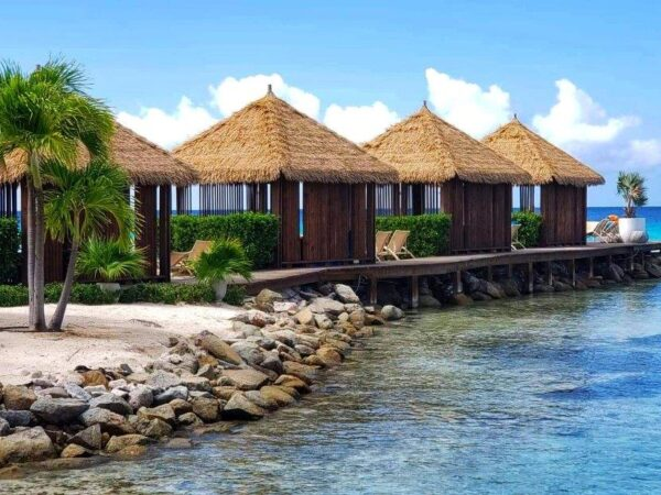 Aruba 2020 (14)