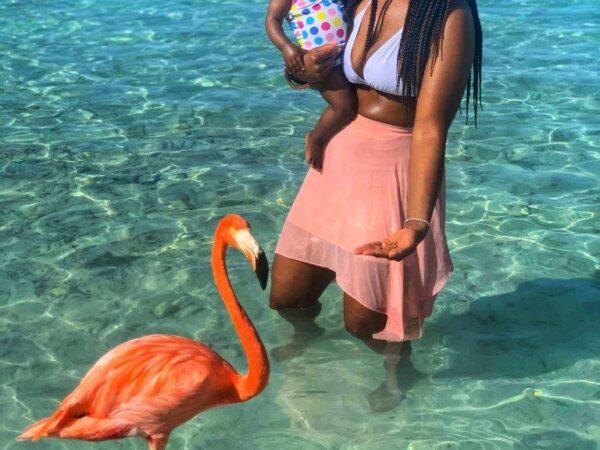 Aruba 2020 (7)