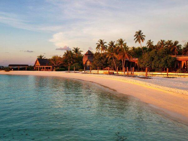Maldives 2021 (141)